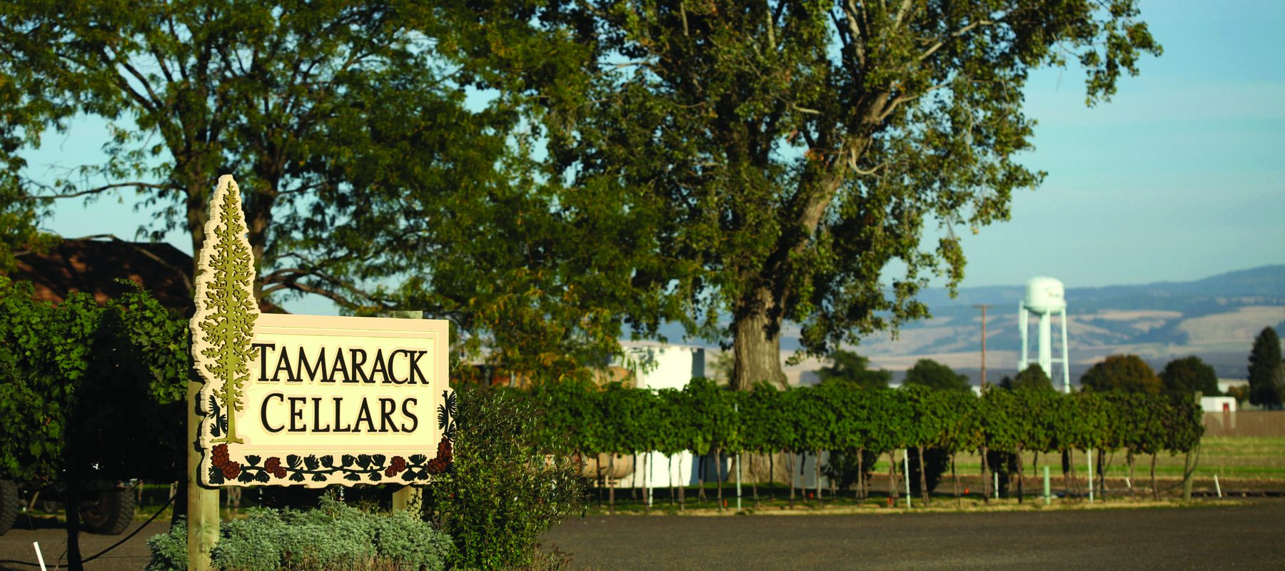 Tamarack Cellars near Richland lodge